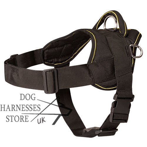 Dog  Harness for K9 Russian Terrier
