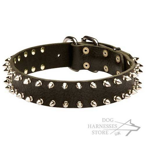 Leather Dog Collar with Two Rows of Nickel-Plated Shiny Spikes
