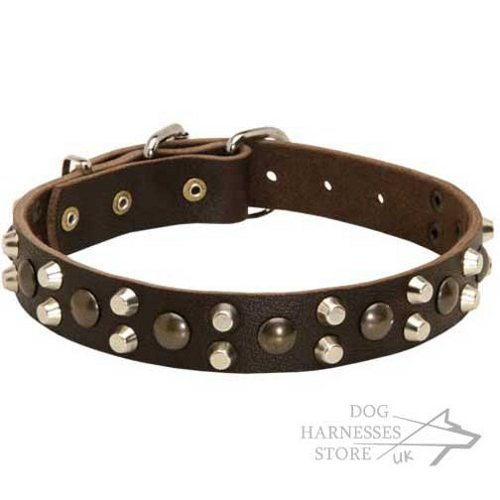 Leather Dog Collar with Brass Studs and Nickel-Plated Pyramids