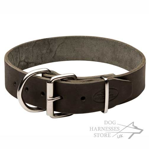 Leather Collar for Large Dogs, Classic Design and Top Quality
