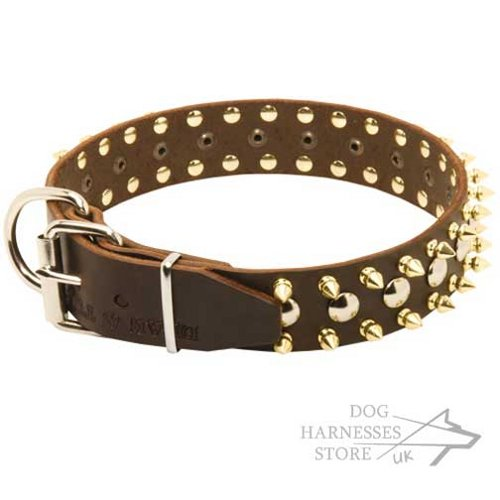 Leather Dog Collar with Exclusive Decoration, Spikes and Studs - Click Image to Close