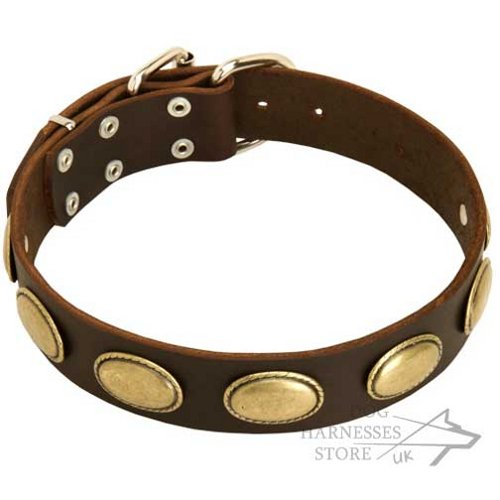 Leather Dog Collar in Retro Style with Oval Brass Plates - Click Image to Close