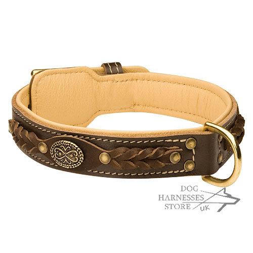 Luxury Dog Collar Nappa Padded, Brown Leather, Royal Design
