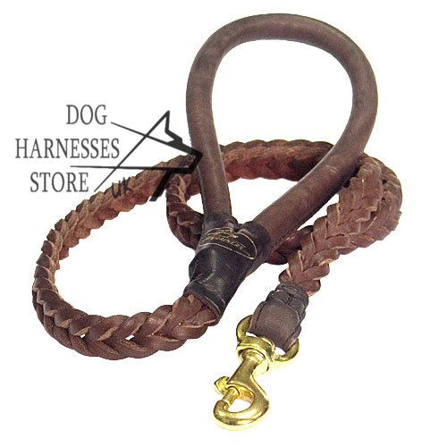 Best Dog Leash