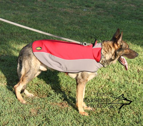 Waterproof Nylon Coat for Dogs
