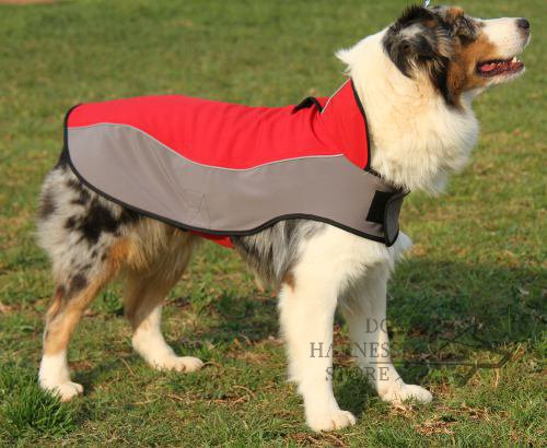 dog coat nylon for australian shepherd