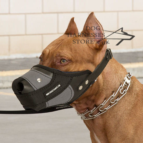 Perfect Soft Dog Muzzle