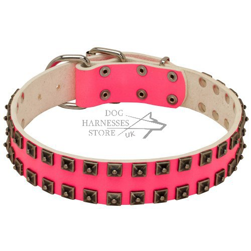 Cool Dog Collar for Girls of Pink Leather with Nickel Studs