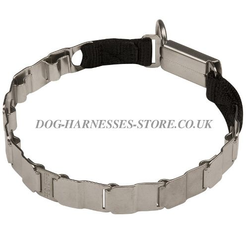 Neck Tech Dog Collar by Herm Sprenger of Stainless Steel
