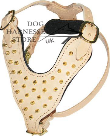 Dog Harness with Chick Brass Spikes Design