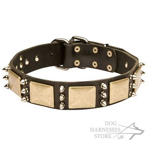 Dog Collar with Spikes