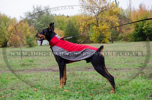 Waterproof Dog Coat for Doberman, Warmth for Winter Walks