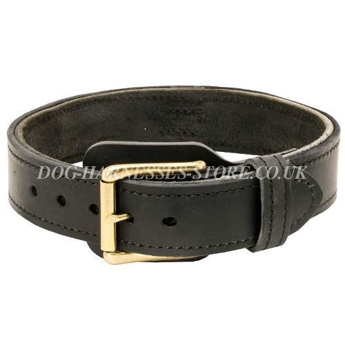 Leather Dog Collar for Agitation, Two-Ply, Wide and Extra Strong