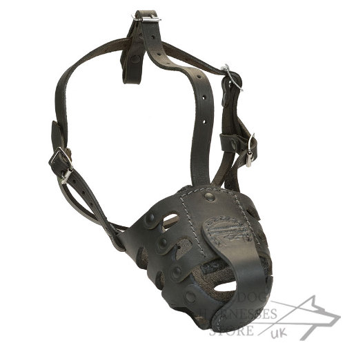 Anti-Bark Dog Muzzle of Leather for Canines with Long Snout