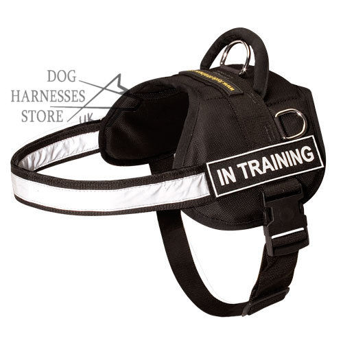 Nylon Dog Harness for Multi-Purpose Use, Reflective Strength