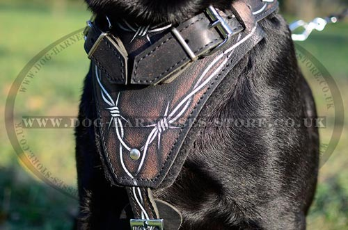 "Best Dog Harness UK with""Barbed Wire"" Hand Painting for Lab"