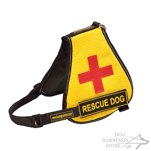 Best Service Dog Vest of Nylon with Identification Patches