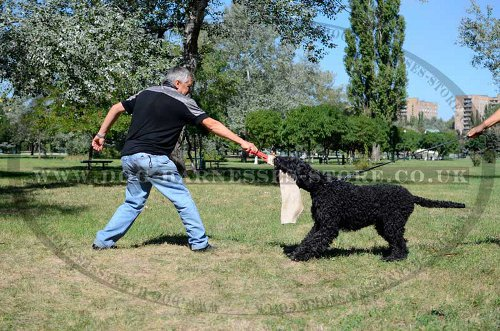 Jute Bite Rag for Black Russian Terrier Prey Drive Retrieve Work