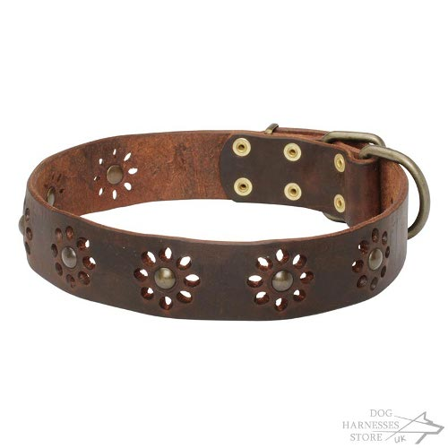 "Leather Flower Designer Dog Collar ""The Breath of Spring"""