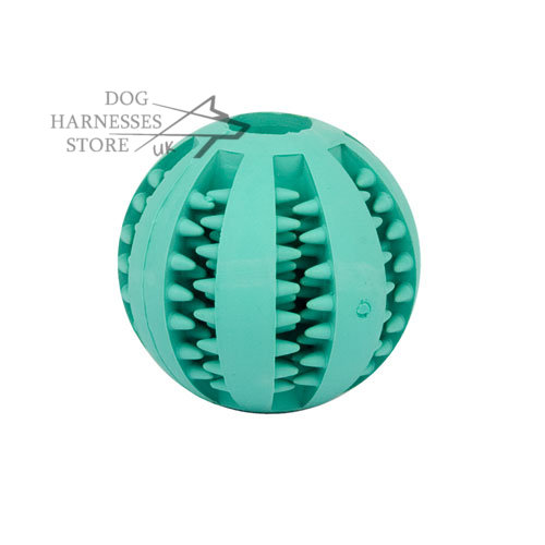 Dental Dog Ball with Mint Flavor for Oral Care and Chewing - Click Image to Close