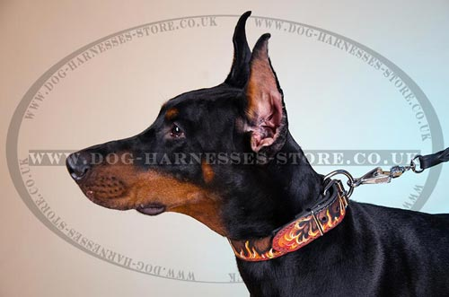 Designer Dog Collar with Flame Painting for Doberman
