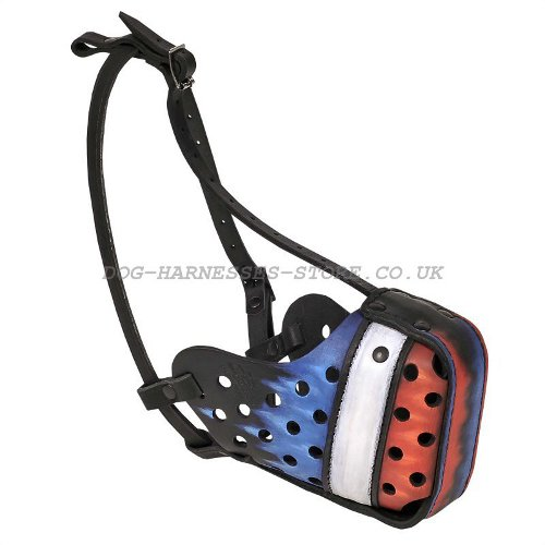 """The French Tricolour"" Hand Painted Dog Muzzle France Flag"