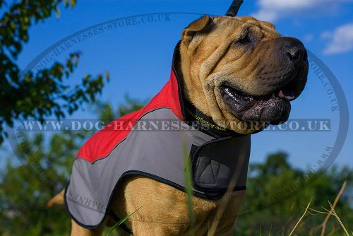Dog Coat for Shar-Pei Warm and Comfy Walking in Cold Weather