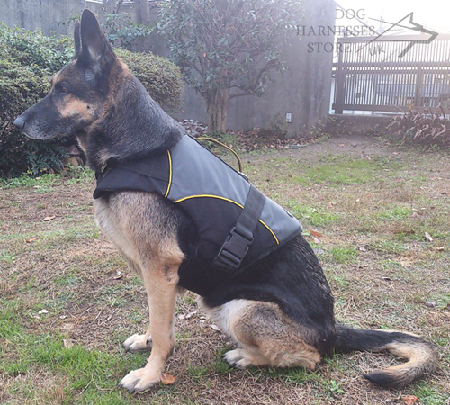 German Shepherd Dog Coat for Warming & Rehabilitation