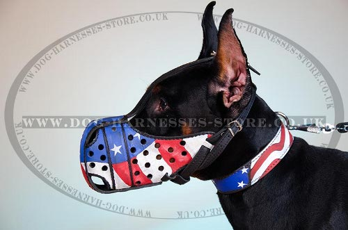 Dog Muzzle for Doberman Pinscher with Stars and Stripes Design