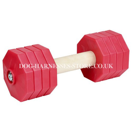 Dog Training Dumbbell, Advanced, 2 Kg, Red Plastic Weight Plates