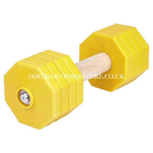 Dog Training Dumbbell for Large and Strong Breeds, 2 Kg