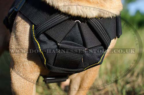 Bestseller! Dog Sport Harness for Shar Pei of Nylon