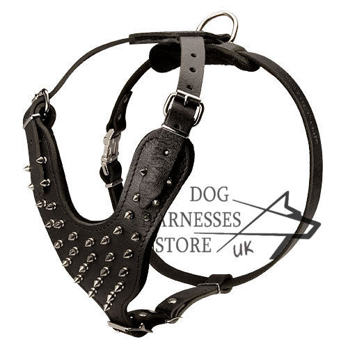 Best Spiked Leather Dog Harness UK, Work of Designers