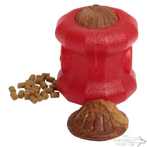 "Educational Dog Treat Toy ""Fire Plug"" for Large Breeds"