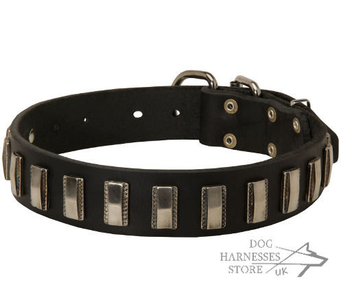 Fancy Dog Collar Leather with Nickel Plates for Strong Canine