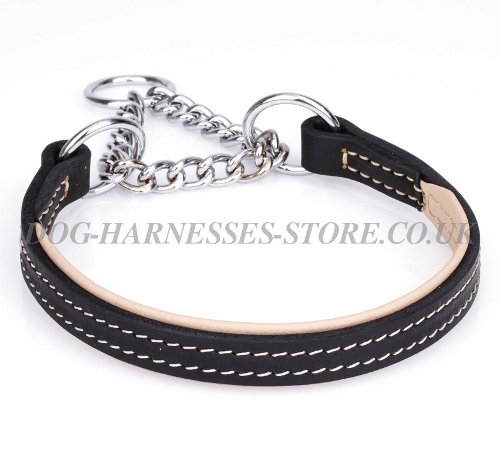 Half-Check Dog Collar for Large Canine Behavior Correction