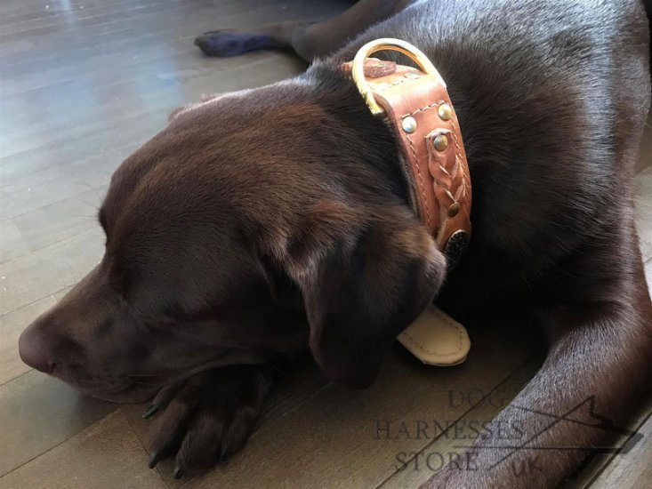 Handmade Dog Collar with Nappa Padding & Braided Decoration