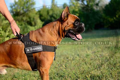 Bestseller! K9 Dog Harness for German Boxer Sport and Training