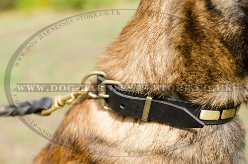 Leather Dog Collar Necklace Style for Belgian Shepherd Walking