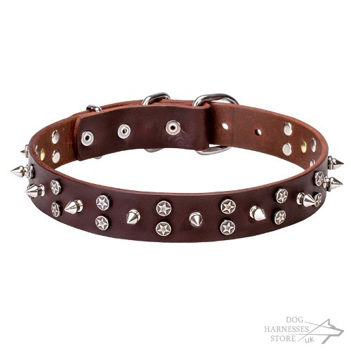 Leather Dog Collar Studded with Stars and Spikes Chrome-Plated - Click Image to Close