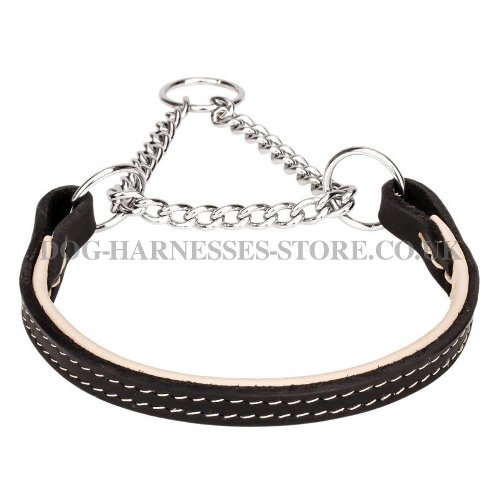 Leather Martingale Dog Collar Nappa Lined for Obedience