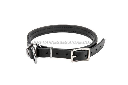 Dog Control Collar, Leather Choker for Canine Obedience