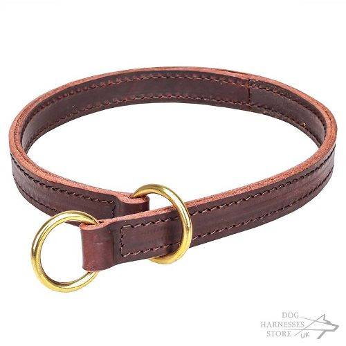 Leather Slip Dog Collar for Obedience Training and Control