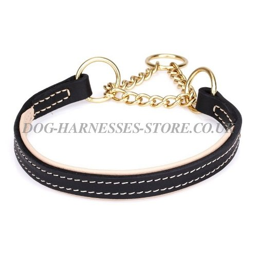 Martingale Dog Collar with Chain and Soft Nappa for Obedience