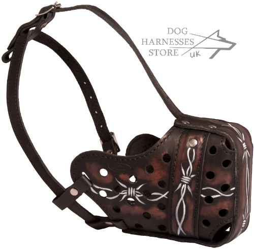 "Fancy Leather Dog Muzzle with ""Barbed Wire"" Painting"