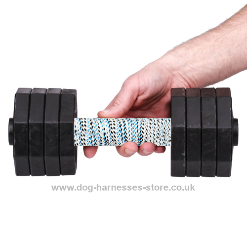 Plastic Dumbbell for Dogs of 4 1/2 lbs with 8 Black Plates