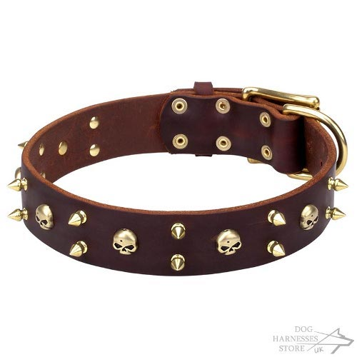 Punk Rock Dog Collar with Goldy Barbs and Spikes, Super Style