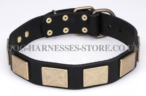 Quality Dog Collar of Selected Leather - Gorgeous Design