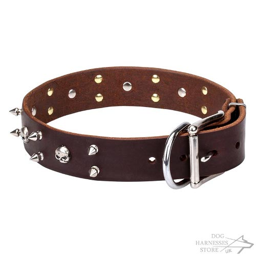 Rockstar Dog Collar, Natural Leather with Skulls and Spikes