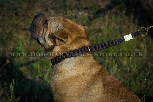 Shar-Pei Collar Braided Leather Choker for Obedience Training